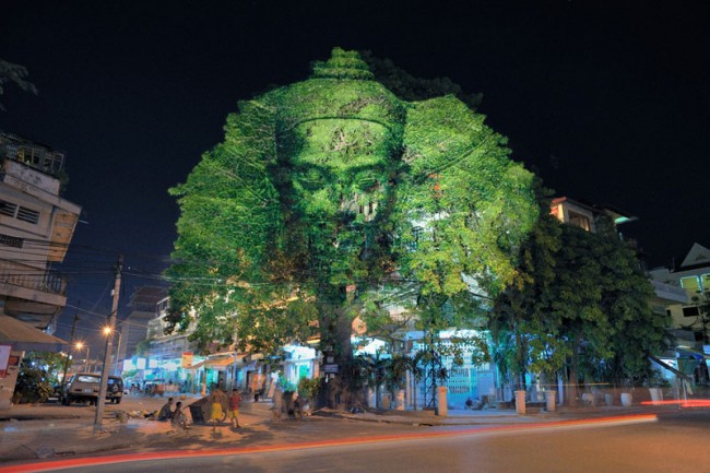 Clément Briend, Cambodian Trees, Photo Phnom Penh Festival
