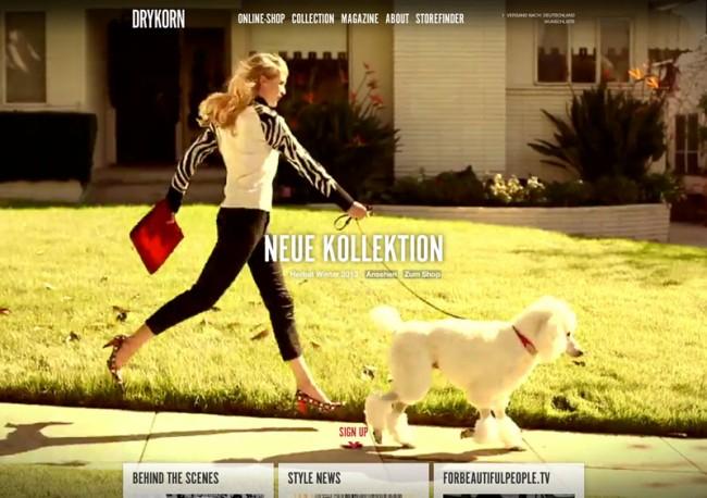 Ein Pudel-Video läuft als Bildhintergrund der Drykorn Website