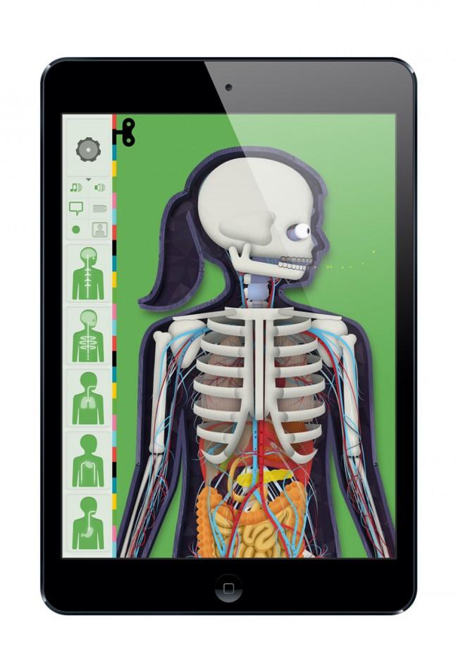Kelli Anderson illustrierte die App »Der menschliche Körper«