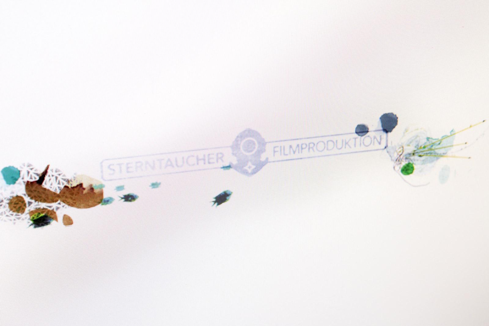 Sterntaucher_Logo