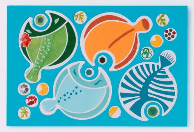 Fischzyklus | Freie Arbeit