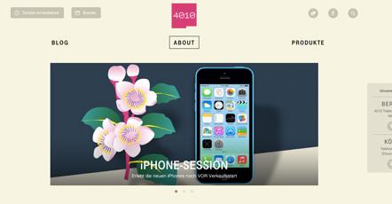 Bild 4010 Webseite