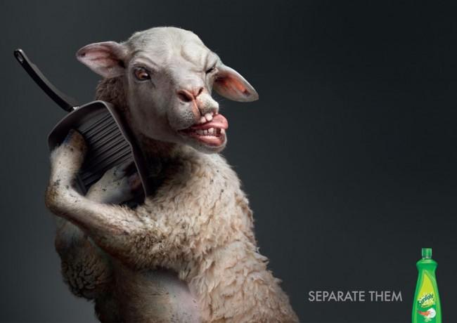 Silber | Lowe Thailand | Unilever, Sunlight: »Clingy Animals« | Illustrator Surachai Puthikulangkura / Supachai U-Rairat