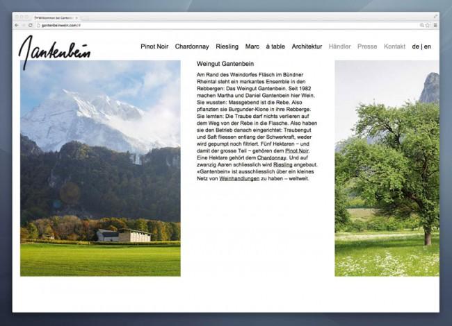 Weingut Gantenbein, Website