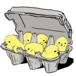 content_size_chicks