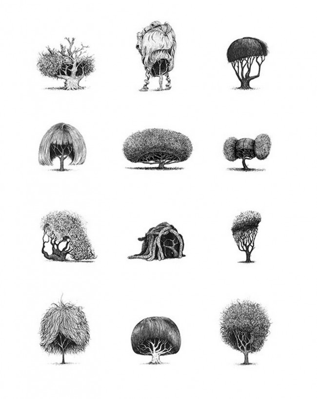 Die zwölf Motive aus Jonny Glovers Serie »Trees with haircuts«
