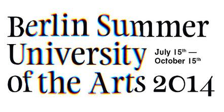 content_size_SummerSchool_2014