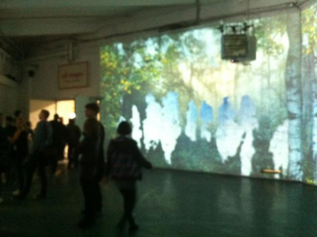 Die Besucher werden in den digital/analogen Wald projiziert