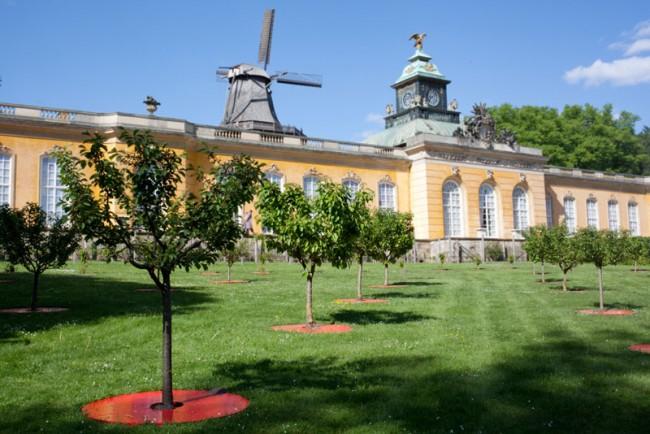 Intervention Kirschgarten