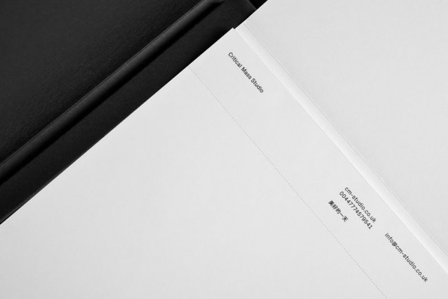 Critical Mass Studio | Branded Collateral & Website