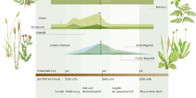 Infografik / Ökologie, Schrift »Mir«