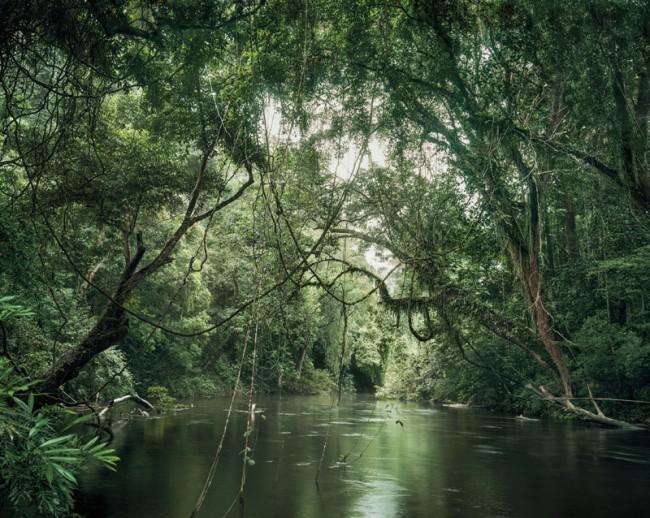 Taman Negara River, Malaysia, 2013
