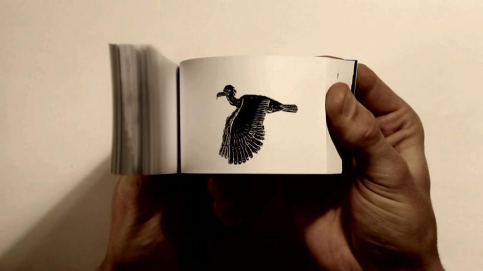 Fish Bird
