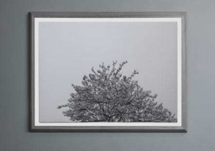 content_size_Hubertus-Hamm-Schnee-01-2013-Galerie-Kornfeld-Berlin-327x229