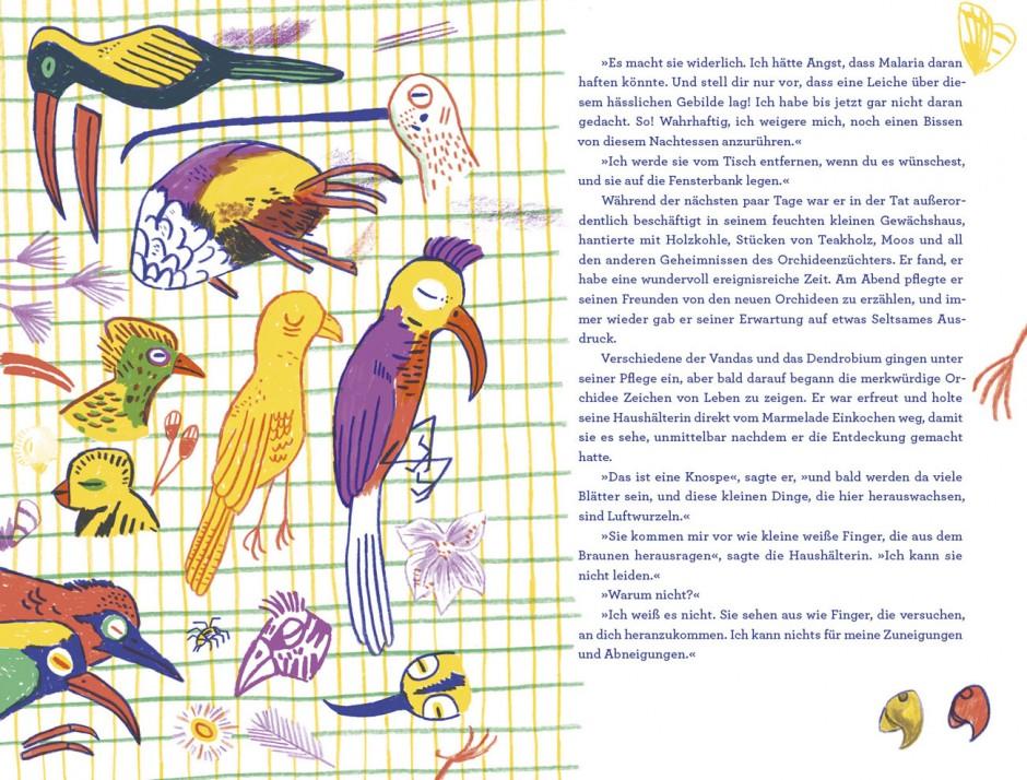 »Die seltsame Orchidee« von H. G. Wells, Tolles Heft Nr. 42, Edition Büchergilde – illustriert von Katja Spitzer