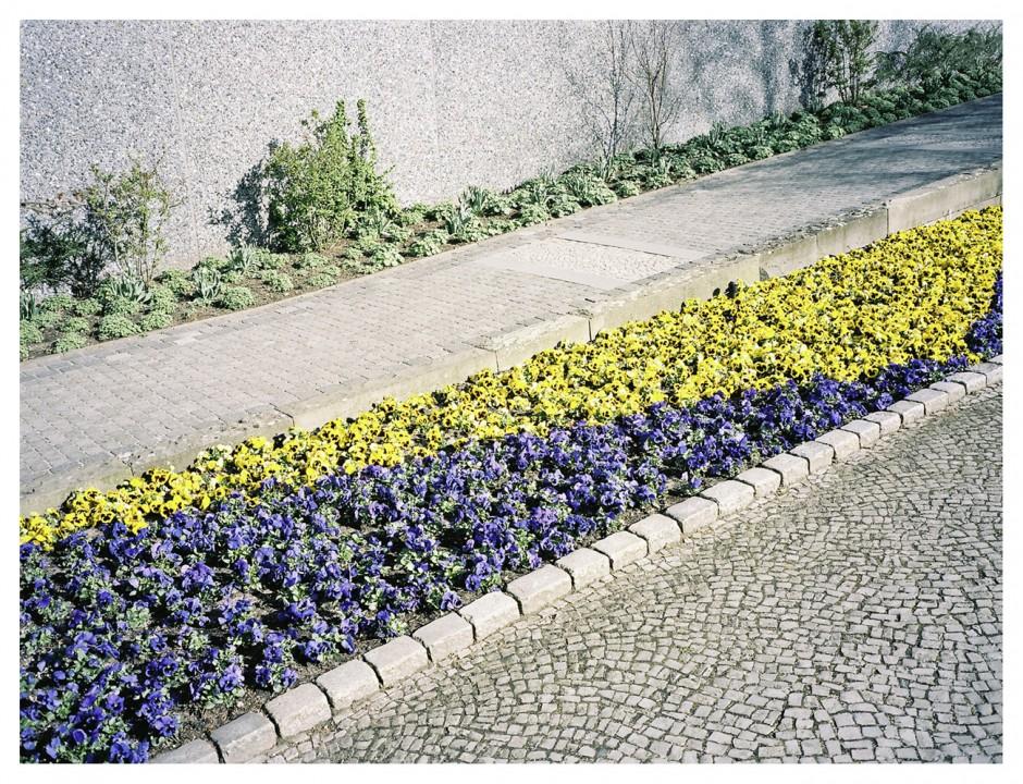 KR_141106_PlantenundBlomen_F_03_p