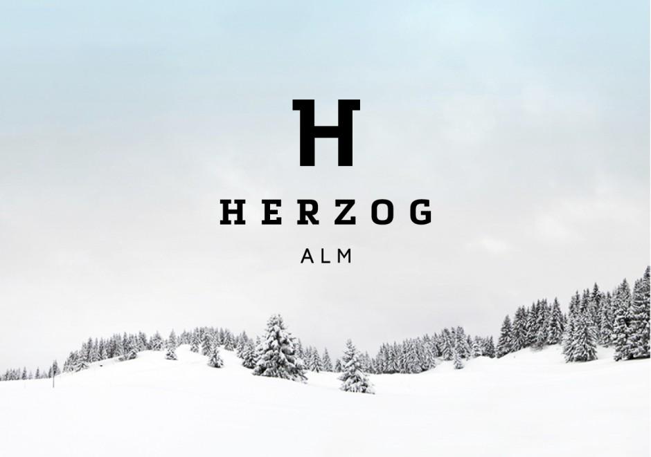 KR_141219_Herzog_11
