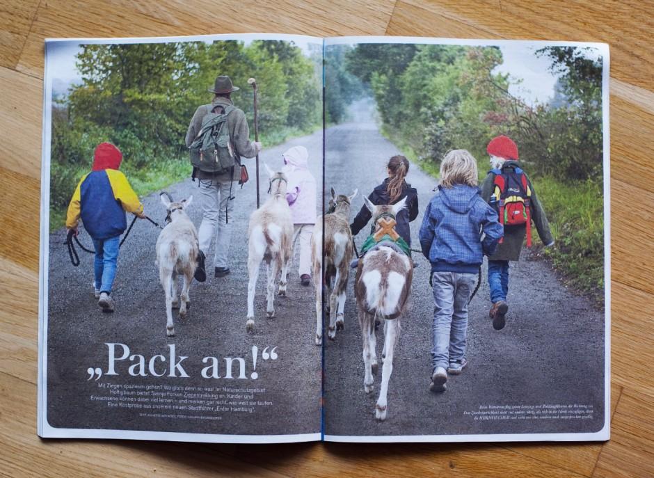 Pack an! -Reportage über Ziegenwanderungen im Naturschutzgebiet Höltigbaum für das Hamburger Hinz und Kunzt Magazin