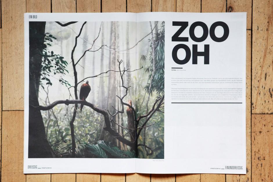 ZOO OH - Bildstrecke Tierfotografie, erschienen im Hamburger STADTLICHH Magazin