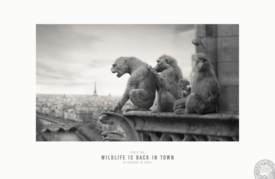 Notre Dame de Paris, 2013, Frankreich, Werbung für Museum National d'Histoire Naturelle, Parc Zoologique de Paris, ausgezeichnet als Silver Lion Campaign, 2014
