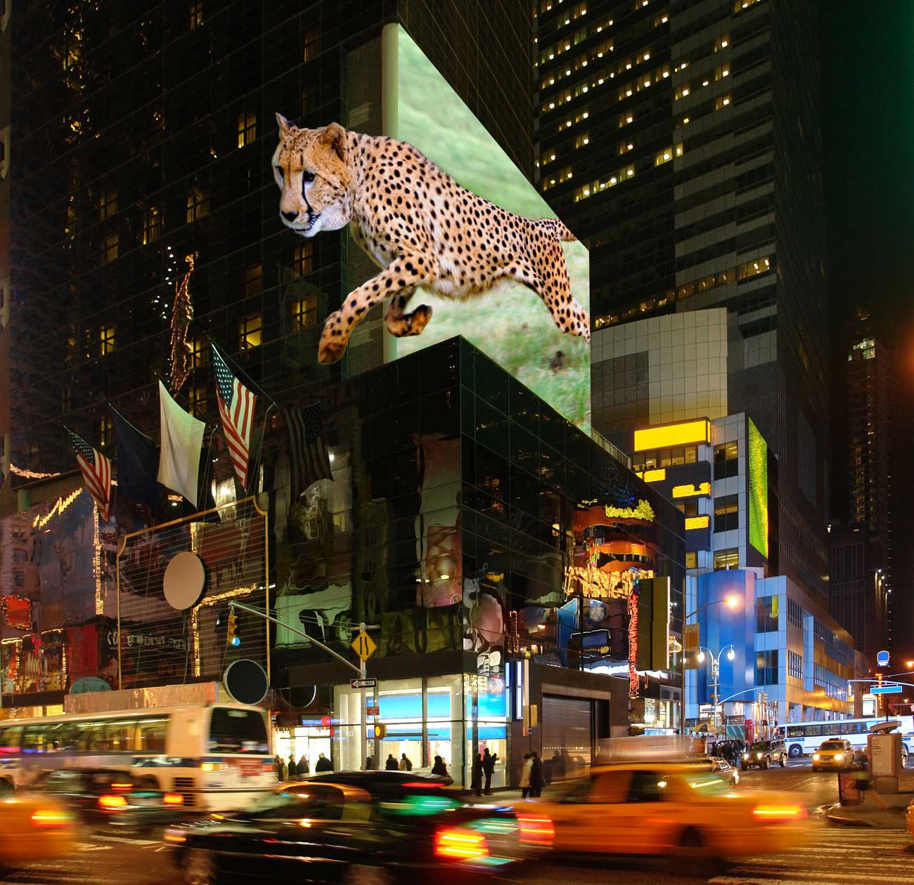 TriLite_3D_display_Times_Square
