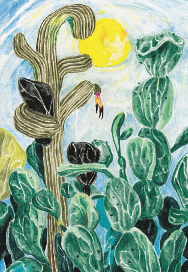 BI_150514_buchillustrationen_chatwin_kaktus.