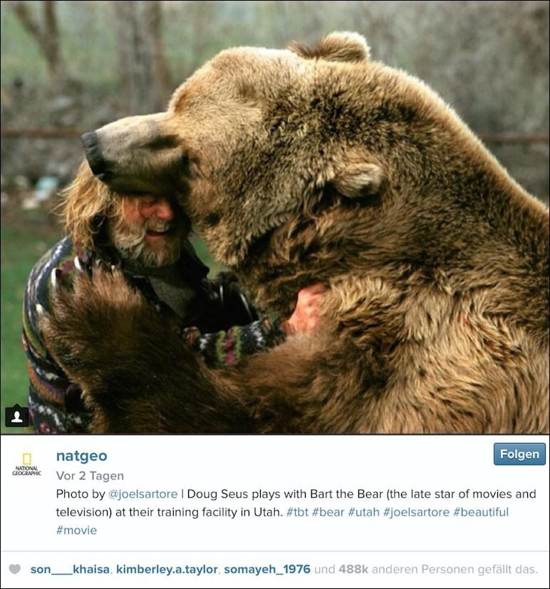 BI_150601_instagram_natgeo_bear_neu...