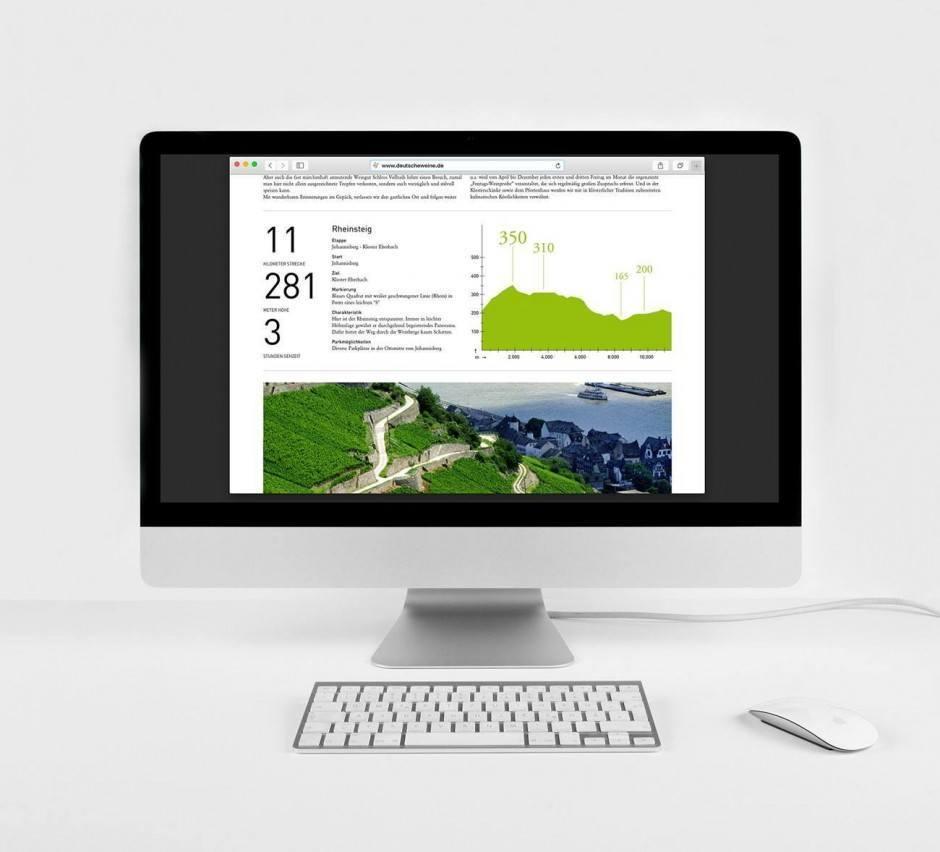 Website Deutsches Weininstitut