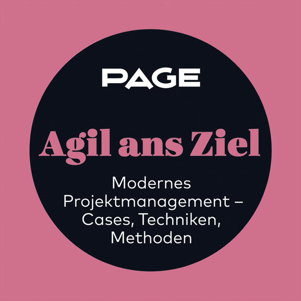 Projektmanagement, Agiles Projektmanagement