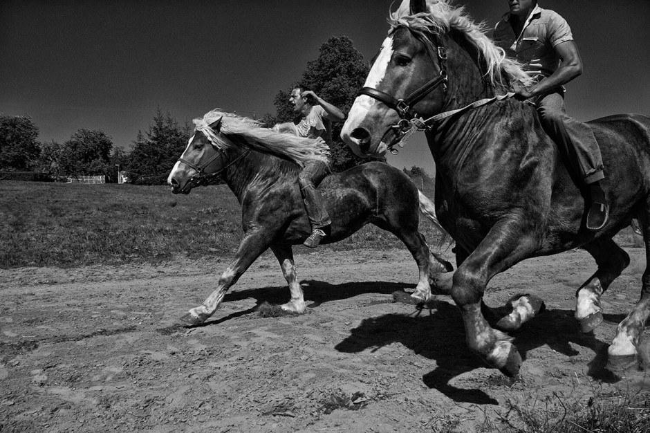 The Action Photographer: daninius