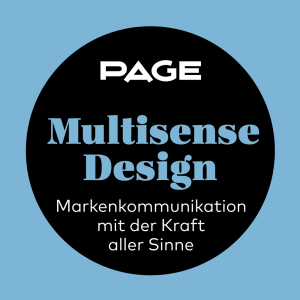 Multisense_Design_Seminar_2016_Visual