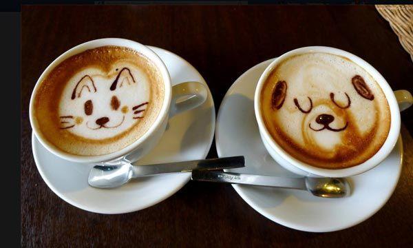 KR_151202_cat_coffee3