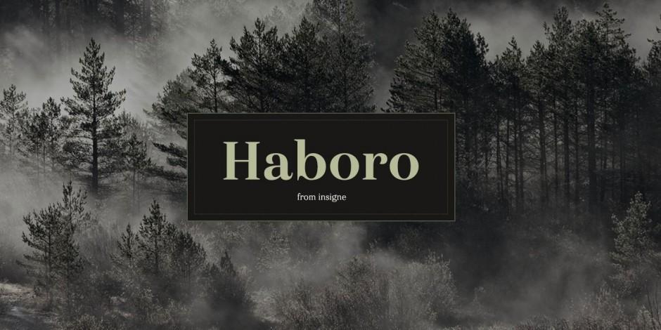 Haboro von Jeremy Dooley