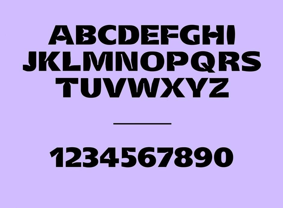 Typeface, 2 Styles