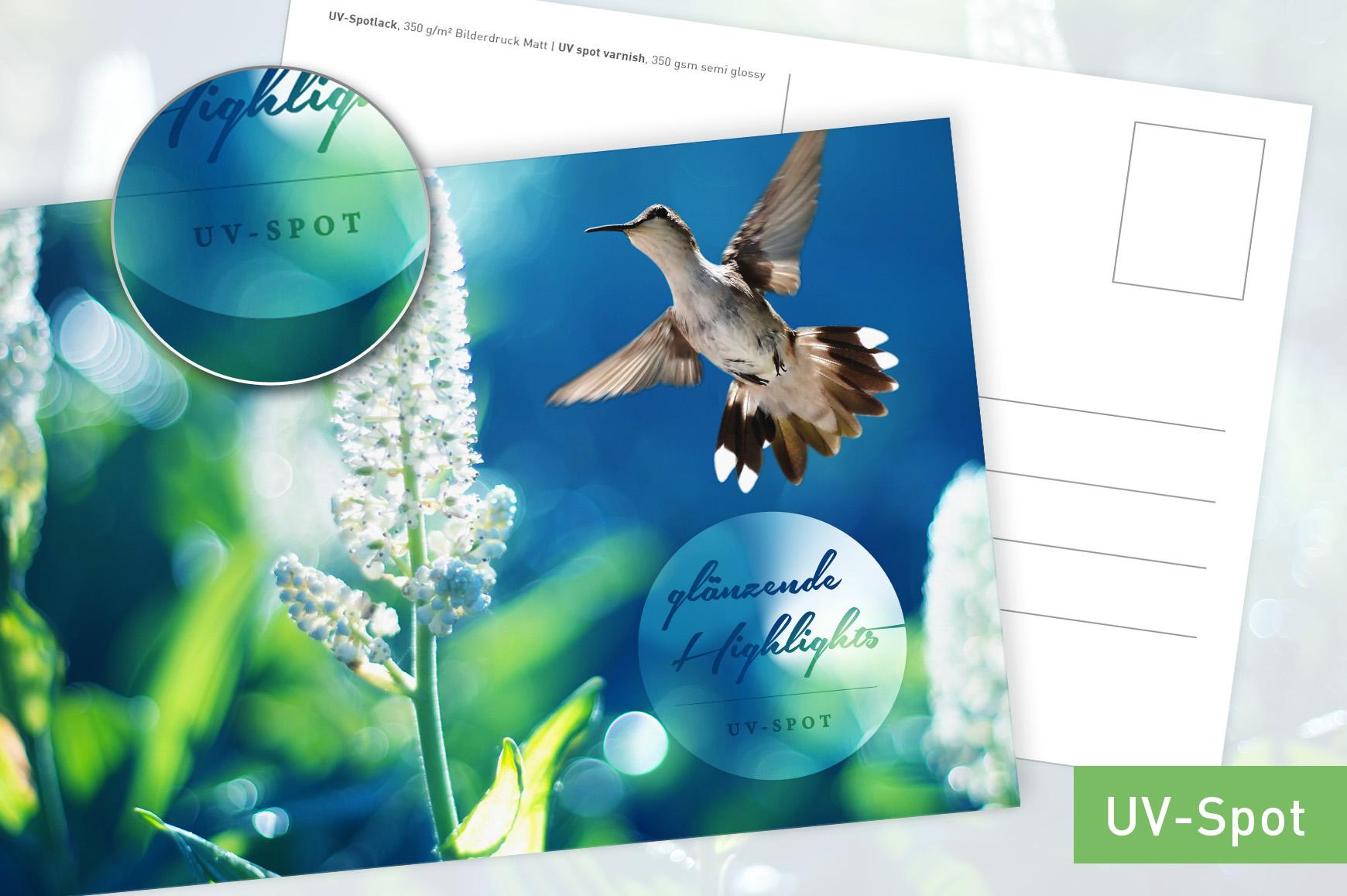 TE_160314_unitedprint_neu_Postkarte-V6-b