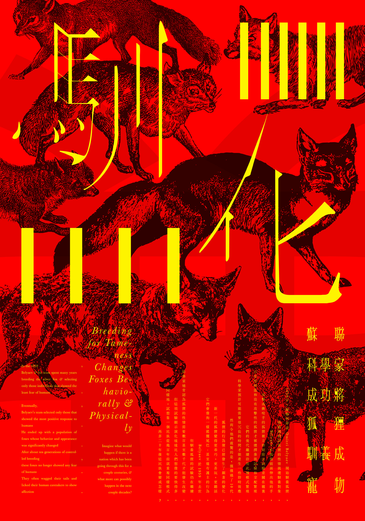 Poster Pet Transformation vom Hongkonger Designer Hanson Chan