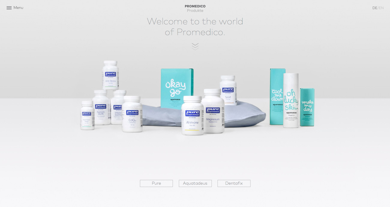 promedico_website_moodley