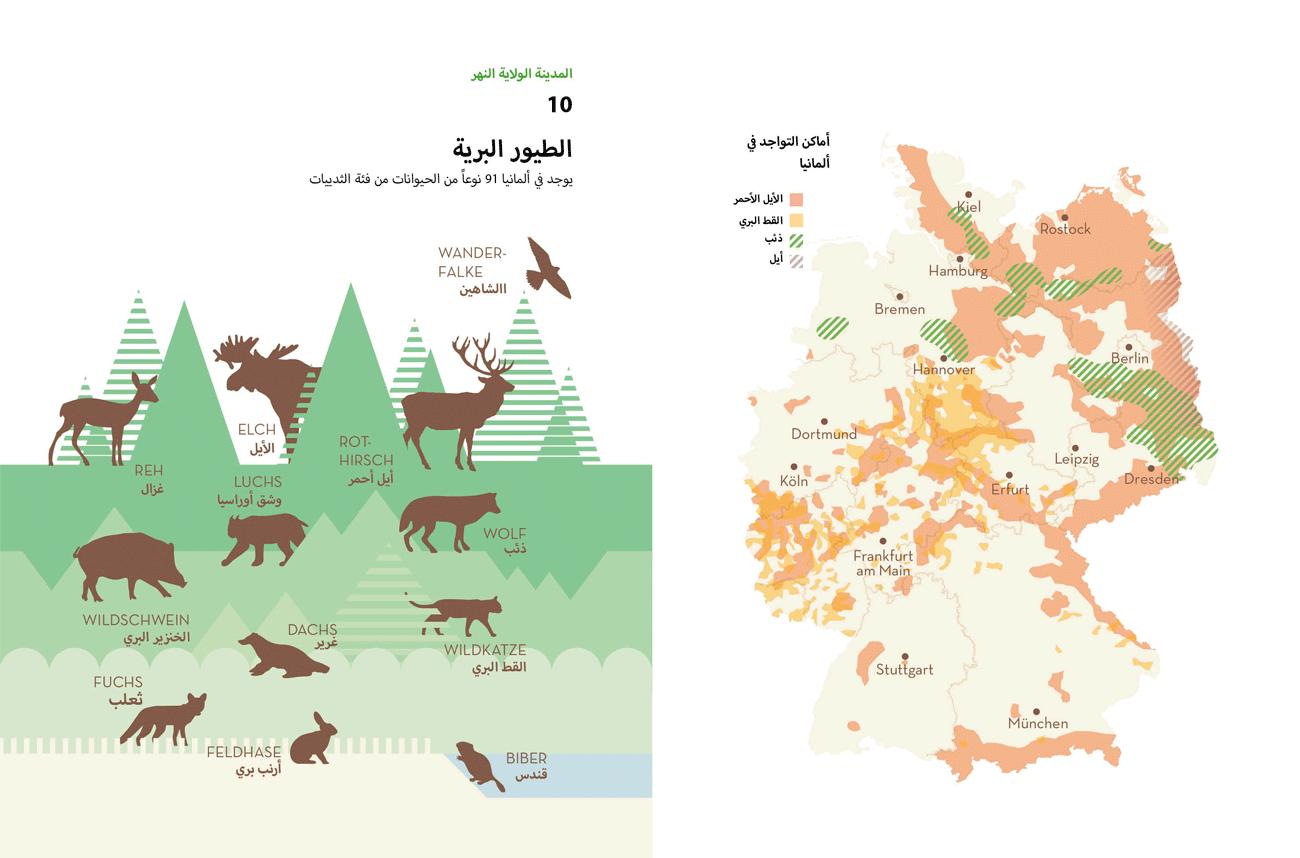 TY_160526_Fluechtlinge_12__Schwochow_Infografiken_Arabisch-11