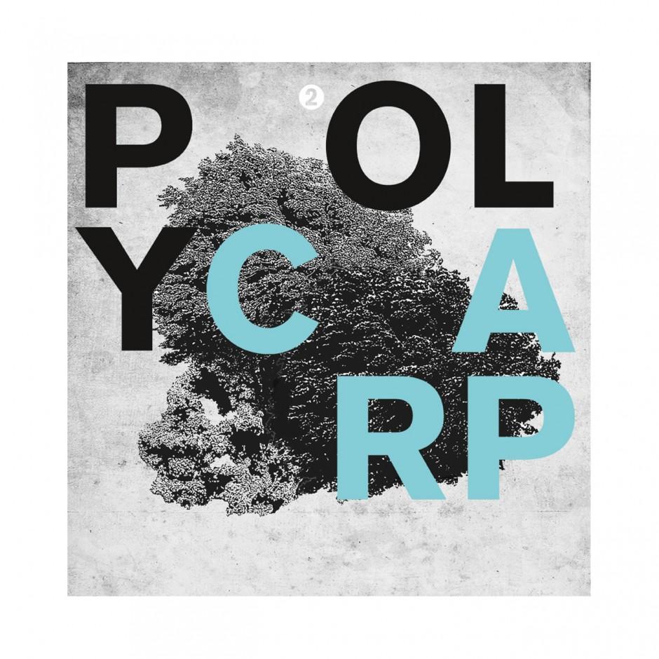 Polycarp, Plattencover 2016