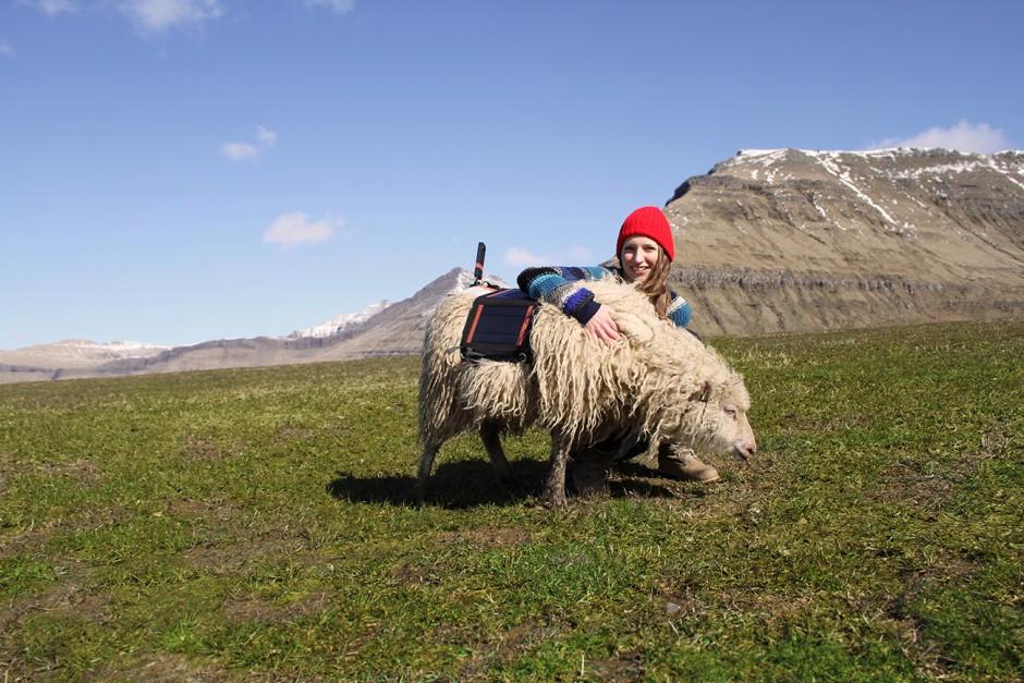 Durita Dahl mit einem der Schafe