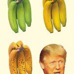 »Die gefährliche Demagogie des Donald Trump.«