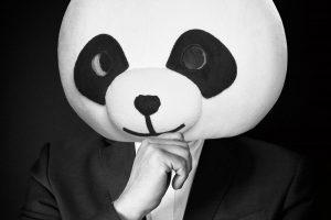 Siebert_panda_2-0