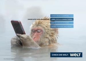 WELT-Kampagne: Motiv Affe