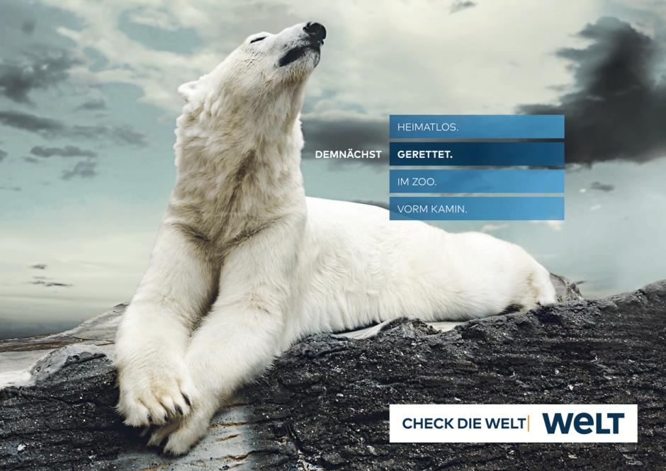 WELT-Kampagne: Motiv Eisbär