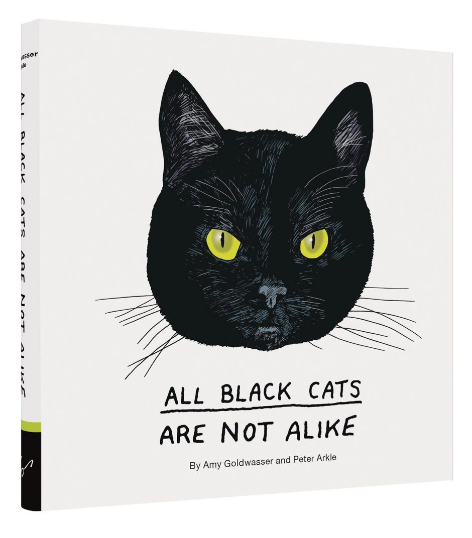 Amy Goldwasser (Text) und Peter Arkle (Illustrationen): All Black Cats Are Not Alike. Chronicle Books, San Francisco