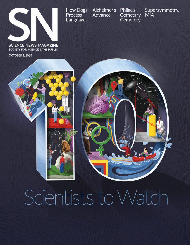 Hier eine Arbeit von Sam Falconer für ein Wissenschaftsmagazin http://samfalconer.co.uk/