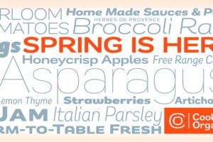 Remora Sans Typografie G-Type