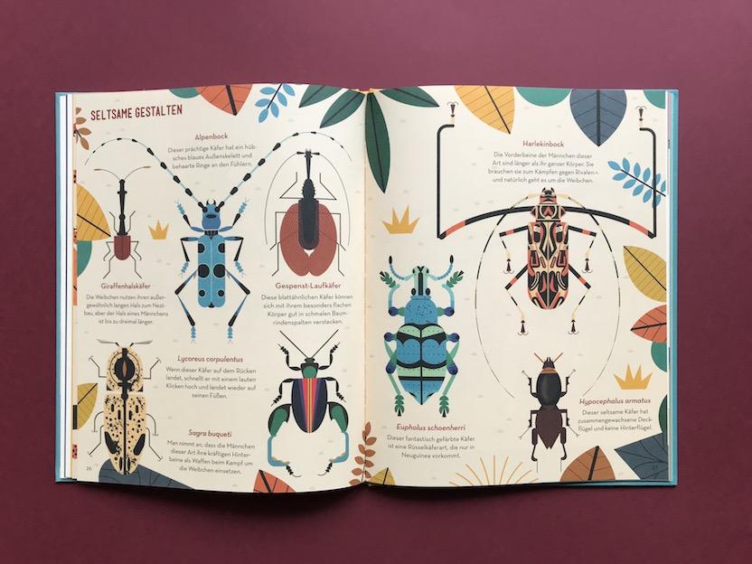 Tolles illustriertes Kindersachbuch: Die faszinierende Welt der Käfer