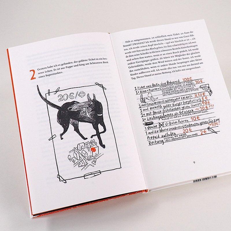 Kinderbuch Jugendbuch ab 12 Jahren illustriert