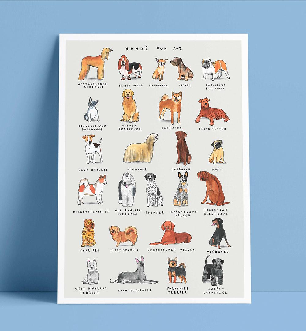 Illustration Plakat Hunde von A bis Z